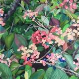"""Maine Blueberries, Mary Allen, 12""""x12"""""""