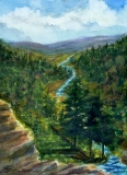 Blackwater River Heading for the Falls, Donna Brune, watercolor / water media
