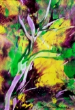 Yellow Glow, Donna Brune