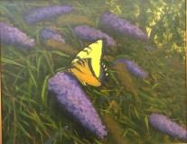 Yellow Swallowtail, Kathy Chumley