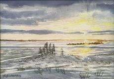 Tundra Light, Hudson Bay, Canada, Phyllis Northup