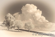 Stone Hill, Raymond Boc