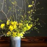 Flourish Root, Jen Perrot