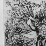 Drypoint Engraving, Margaret Rogers