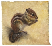 Chipmunk, Lori Wallace-Lloyd, oil on canvas