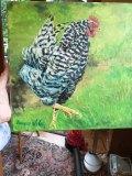 Barred Rock Chicken, Geneva Welch,  Oil On Canvas, 12x12